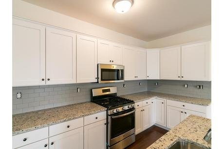 Kitchen-in-Reserve Inglewood-at-Sand Springs-in-Drums