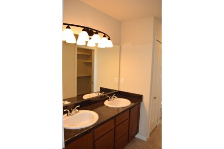 Bathroom-in-The Brookwood-at-Cross Creek-in-Burton