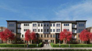 Miles - Birchwood at Brambleton: Ashburn, District Of Columbia - Van Metre Homes