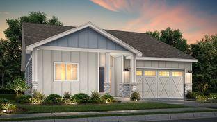 Newport - RainDance: Windsor, Colorado - View Homes Northern Colorado