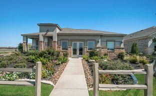 August Fields - 45' by San Antonio - Armadillo Homes in San Antonio Texas