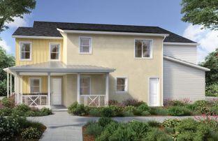 Iron Plan Two - Righetti: San Luis Obispo, California - Williams Homes