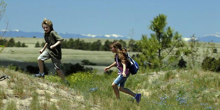 Wild Pointe Ranch