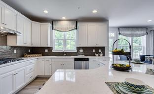 Oak Hill by Williamsburg Homes LLC in Baltimore Maryland
