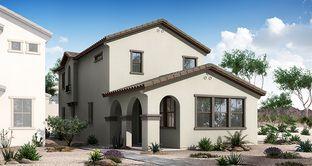 Colony - Village at Heritage Crossing: Mesa, Arizona - Woodside Homes