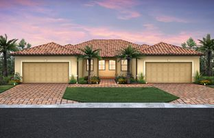 Cascadia Duplex - IslandWalk at the West Villages: Venice, Florida - DiVosta Homes