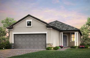 Steel Creek - IslandWalk at the West Villages: Venice, Florida - DiVosta Homes