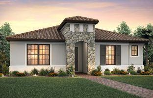 Arbordale - IslandWalk at the West Villages: Venice, Florida - DiVosta Homes