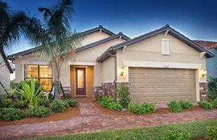 Martin Ray - IslandWalk at the West Villages: Venice, Florida - DiVosta Homes