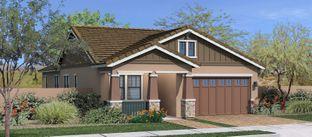 Evergreen Elm - Lakeview Trails at Morrison Ranch: Gilbert, Arizona - Fulton Homes