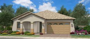 Rockaway - North Shore at Estrella Commons: Goodyear, Arizona - Fulton Homes
