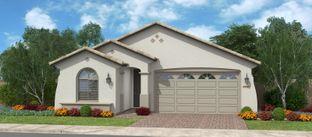 Amorosa - Calistoga at Estrella Commons: Goodyear, Arizona - Fulton Homes