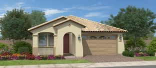 Arroyo - Calistoga at Estrella Commons: Goodyear, Arizona - Fulton Homes