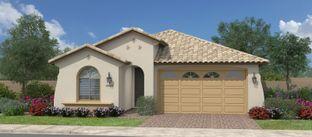 Fairwinds - Calistoga at Promenade: San Tan Valley, Arizona - Fulton Homes