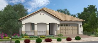 Acacia - Groves at Barney Farms: Queen Creek, Arizona - Fulton Homes
