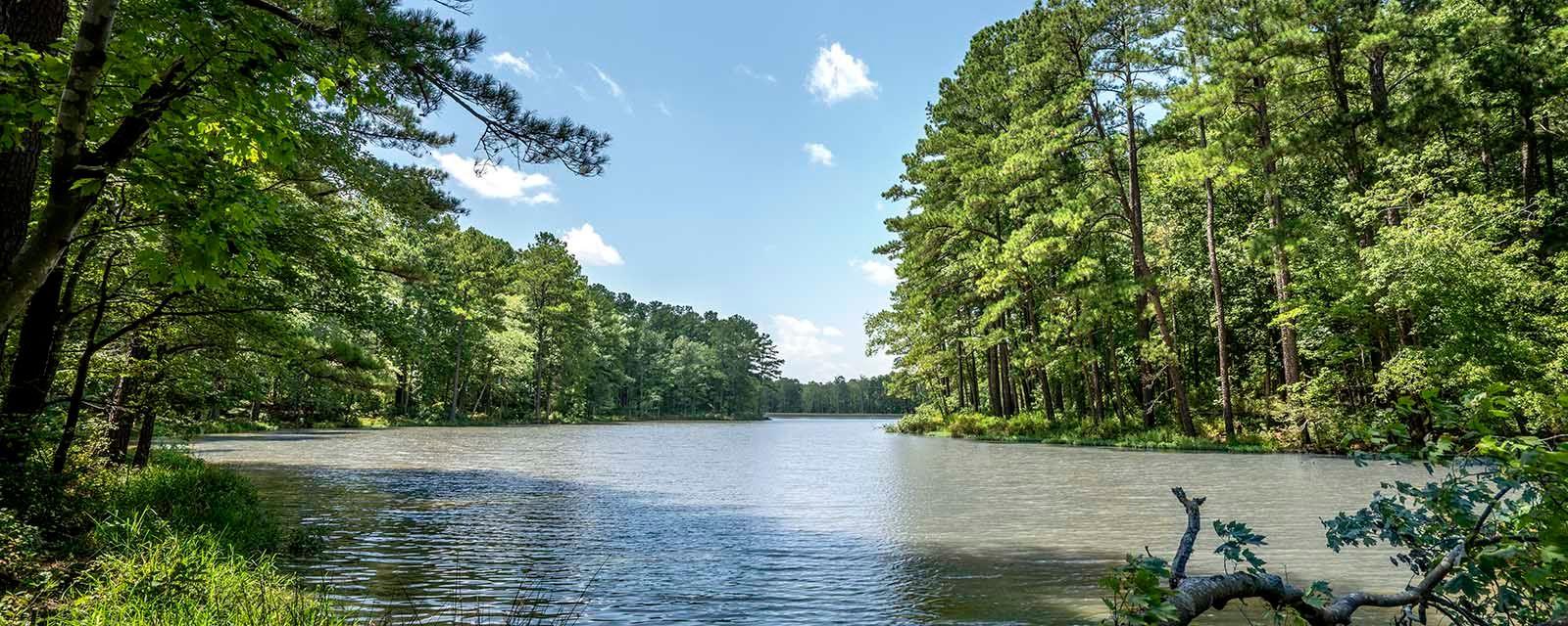 Lake Castleberry Image 1