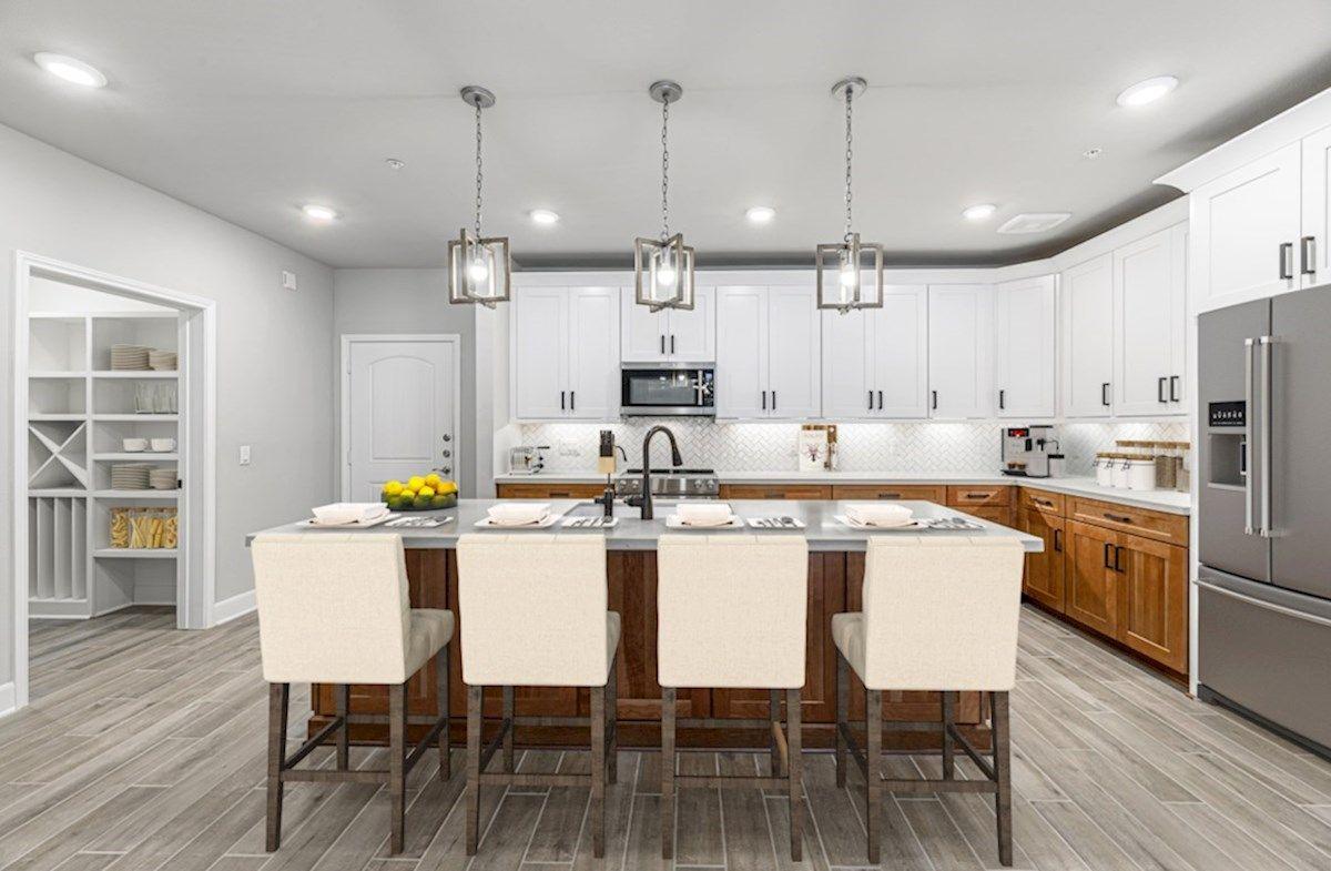 Interior:Dorset Kitchen