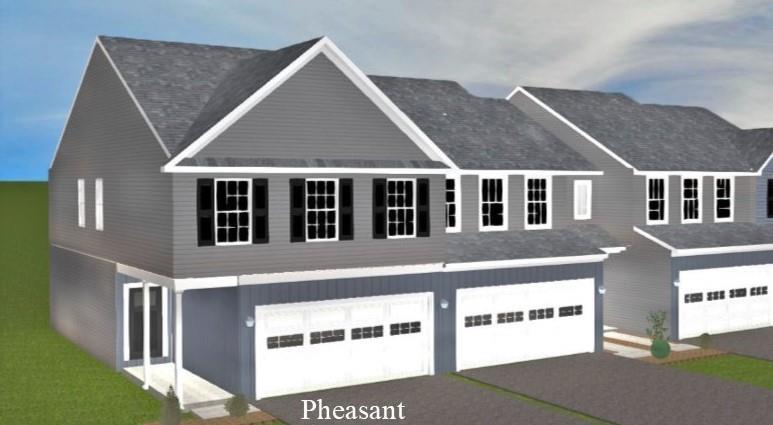 Pheasant model:CAD rendering