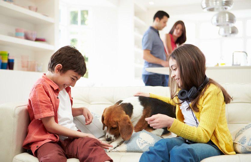 Browning:Make Family Memories