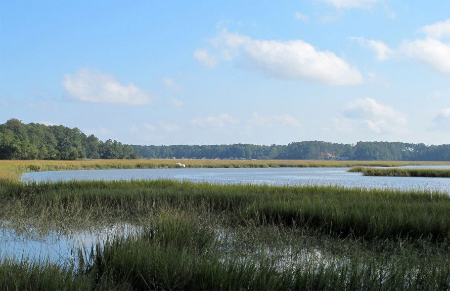 Scenic LowCountry Lifestyle