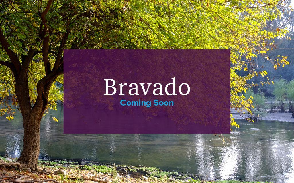 Bravado,93654