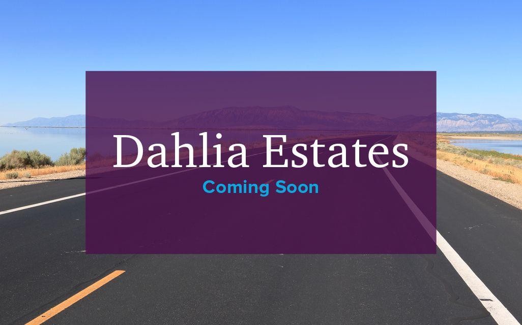 Dahlia Estates,84015
