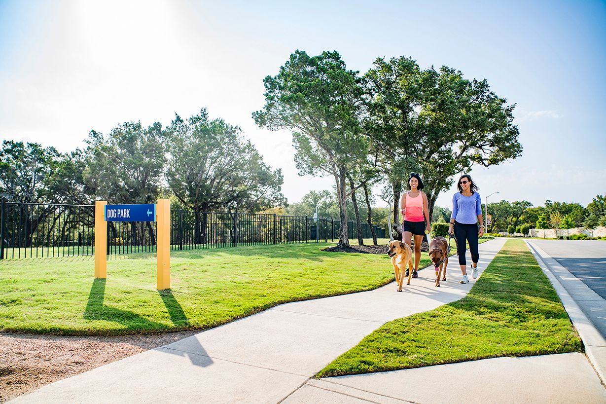walking to community dog park