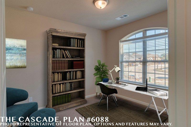 Interior:The Cascade - Study