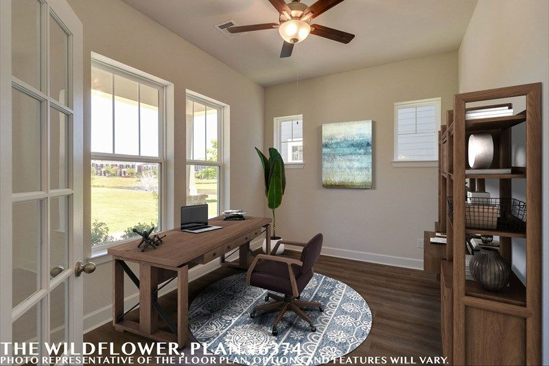 Interior:The Wildflower - Study