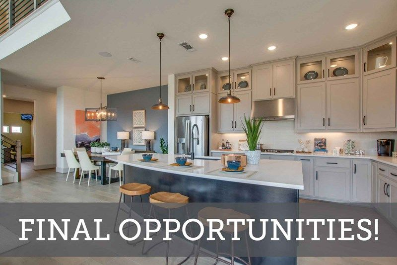 The Terraces of Las Colinas - Final Opportunities