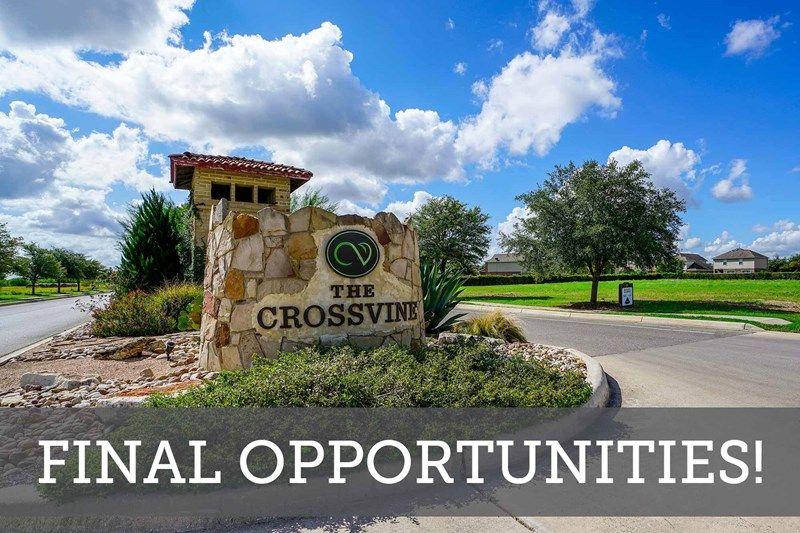 The Crossvine - Final Opportunities