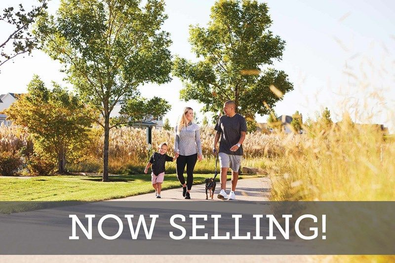 The Reserve at Twin Lakes - Now Selling