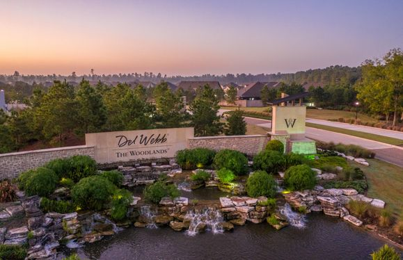 Welcome To Del Webb!
