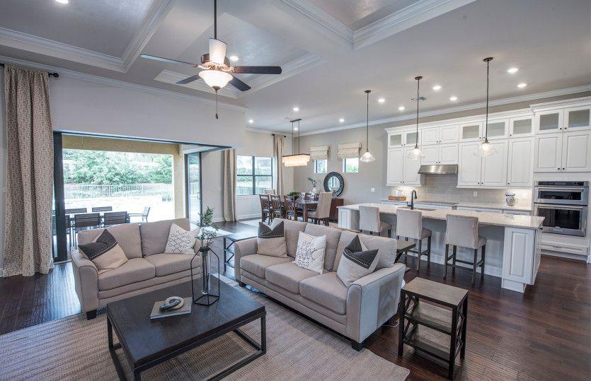 Pinnacle:Conceptual: Open Living Area