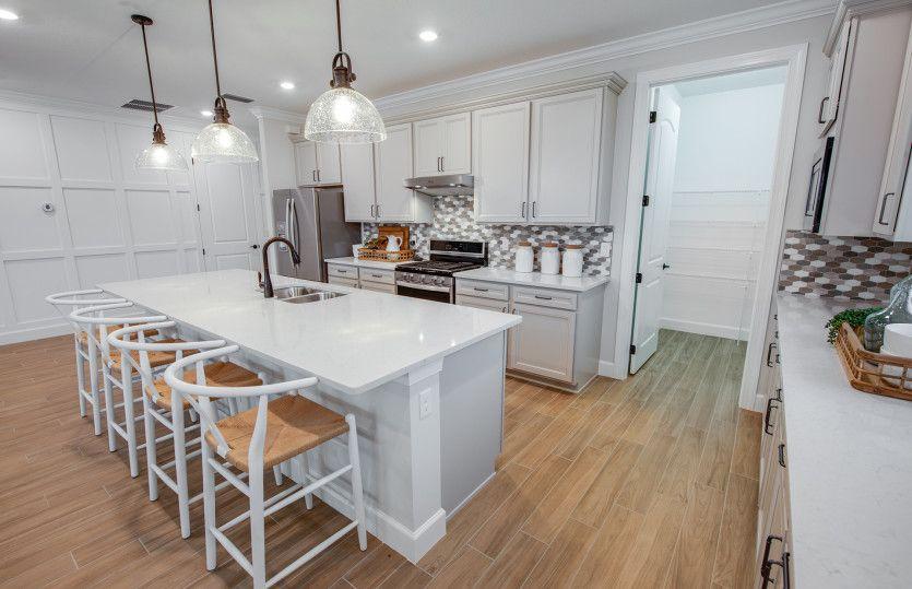 Palmary:Designer Kitchen