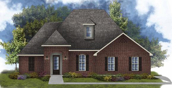 Clayton II B - Open Floor Plan - DSLD Homes