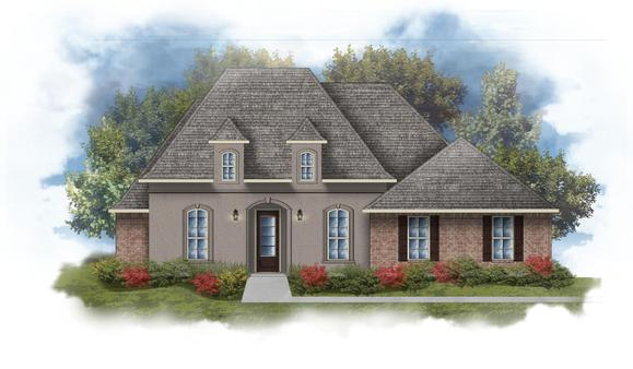 Rossi III A Open Floorplan Elevation Image - DSLD Homes
