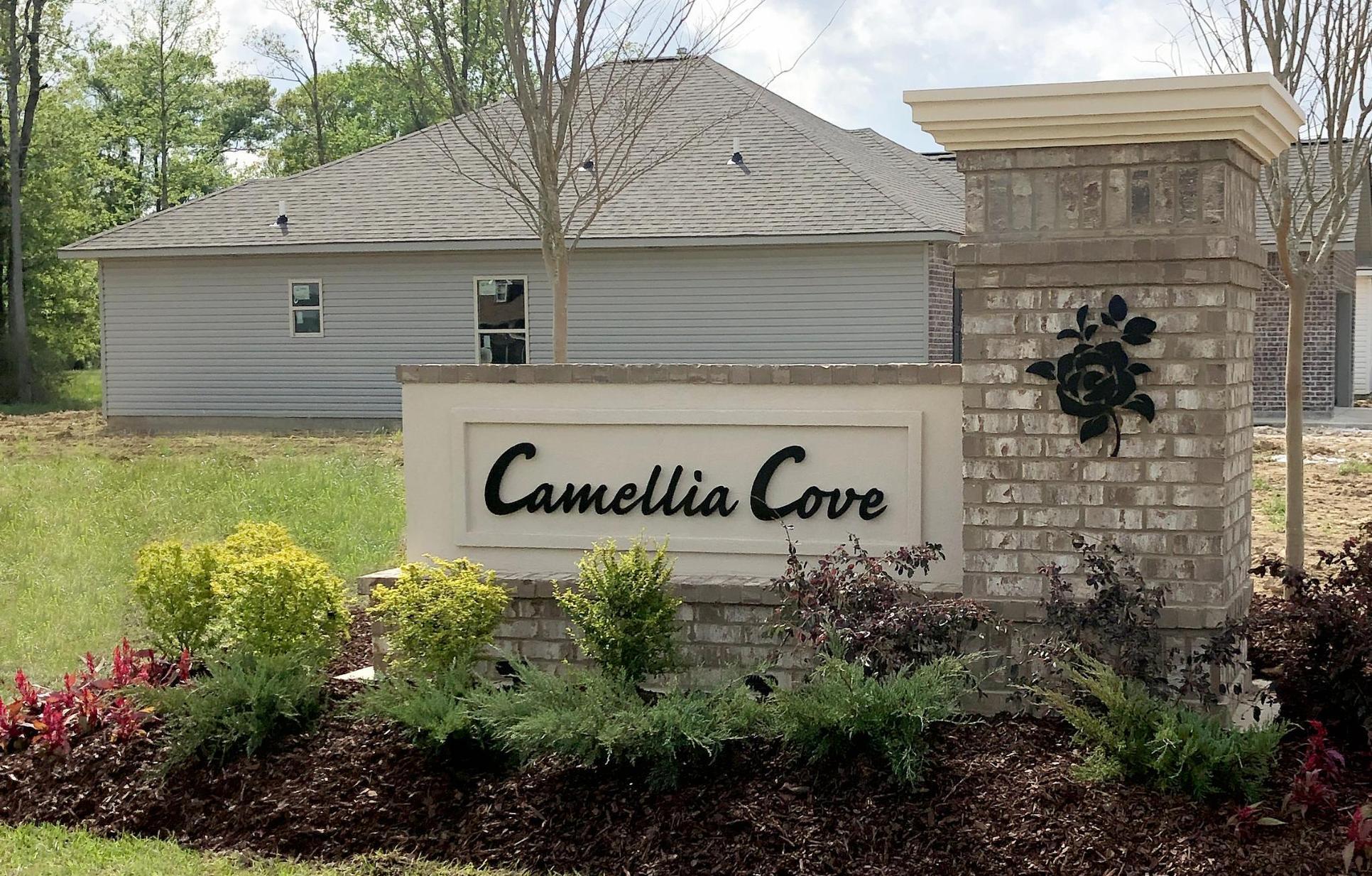 DSLD Homes - Gonzales, LA - Camellia Cove - Community Entrance