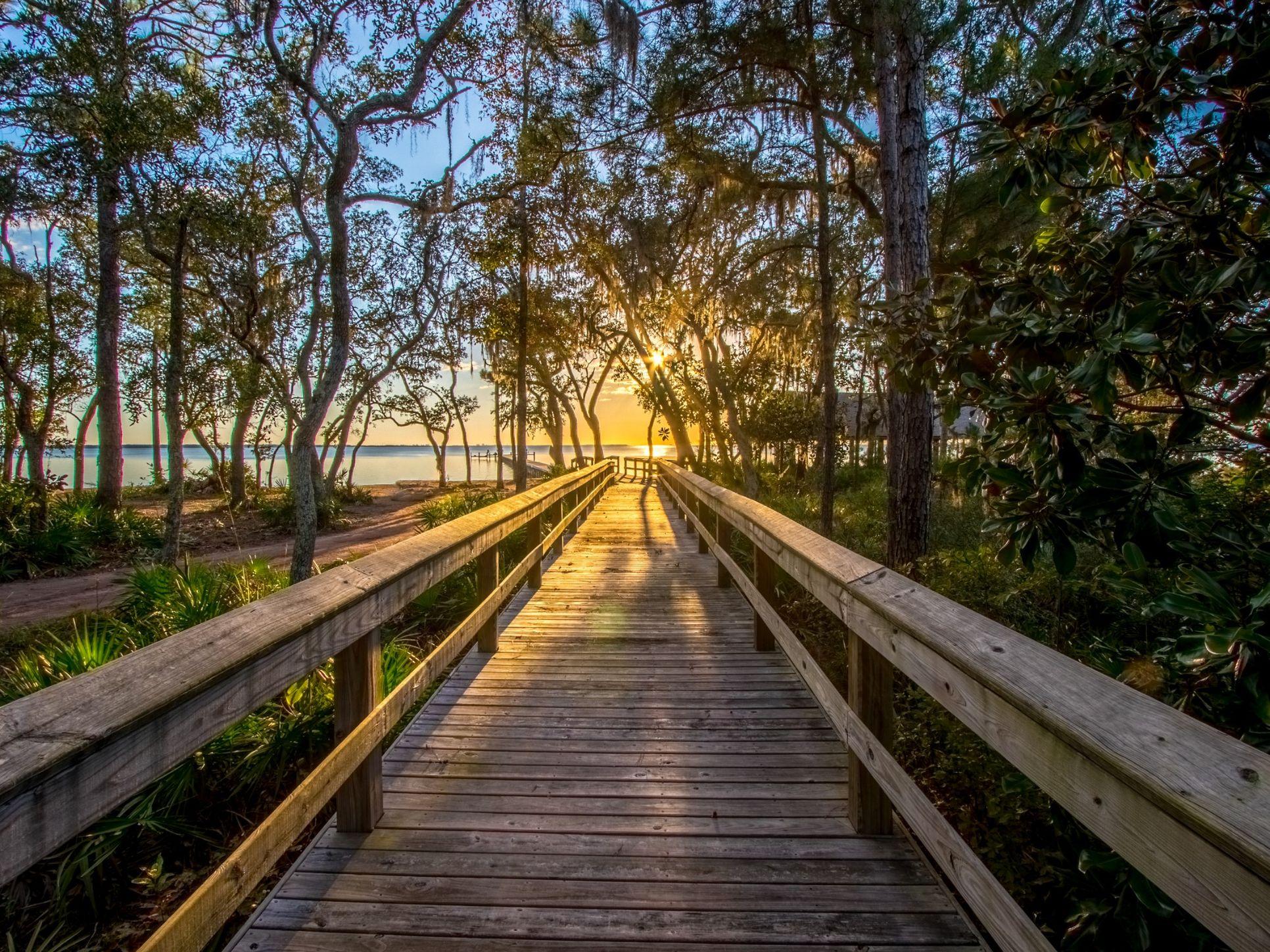 The Trails at Hammock Bay Walking Trail