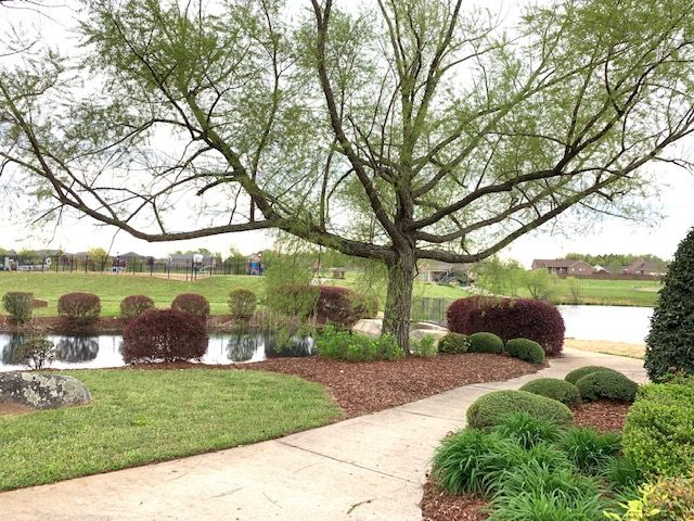Community Pond, Pool, and Green Space- Watercress Lakes- DSLD Homes Huntsville