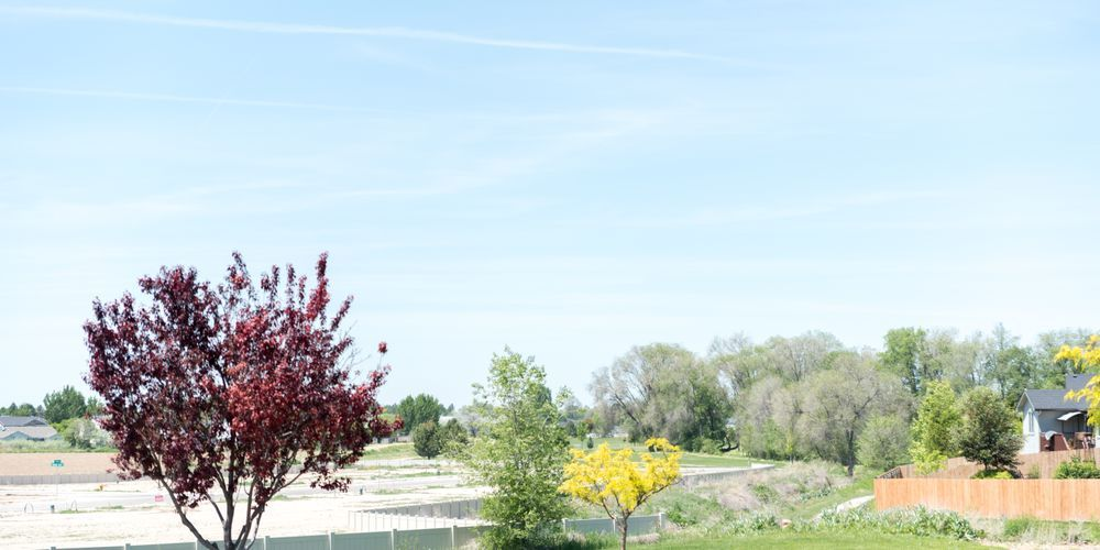 The River Meadows,83687