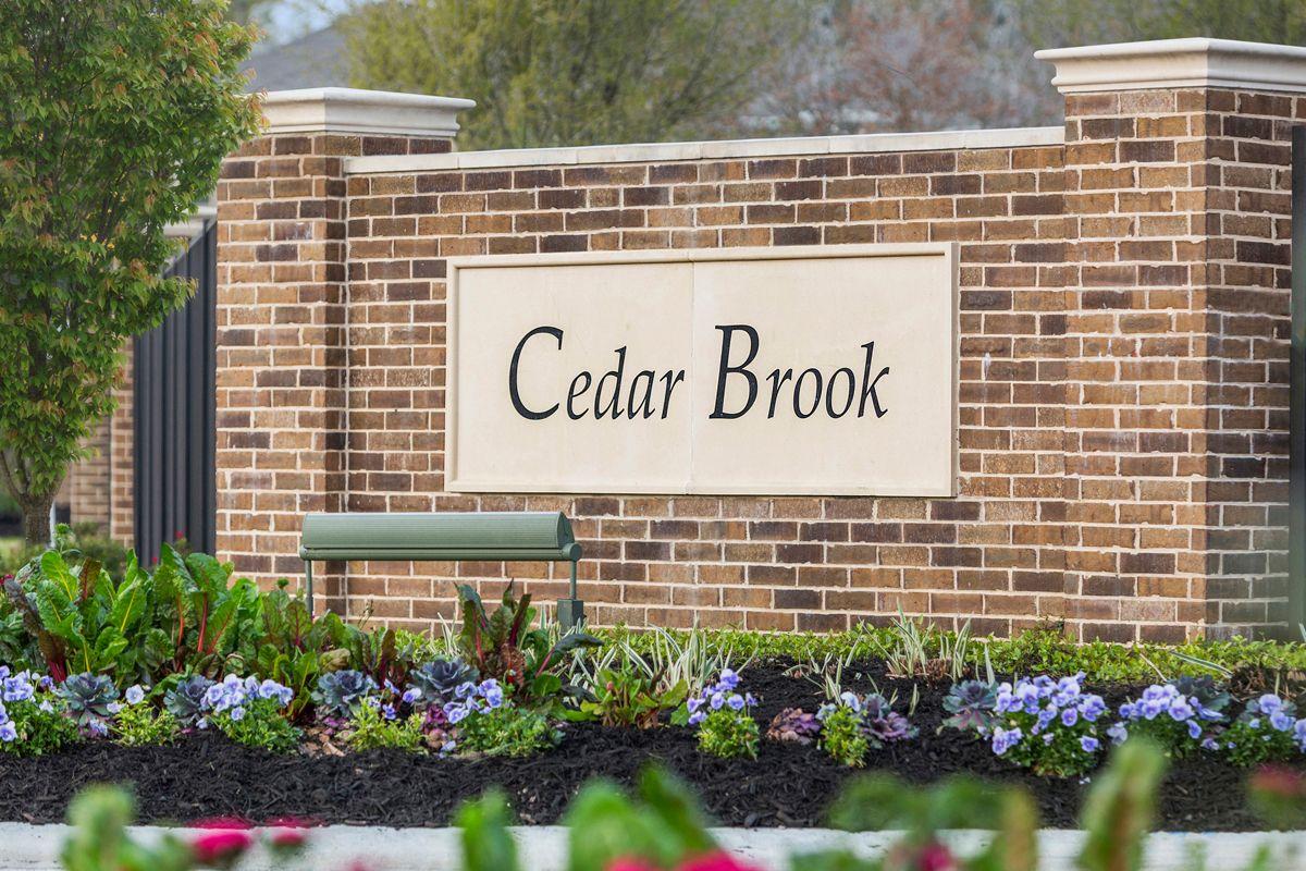 Cedar Brook,77080