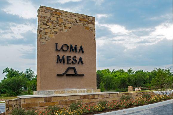Loma Mesa,78214