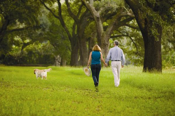 Take a stroll:Miles of walking trails to explore and wander at Cresswind at The Ponds by Kolter Homes