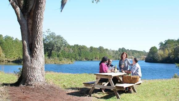 Cresswind Georgia at Twin Lakes,30548