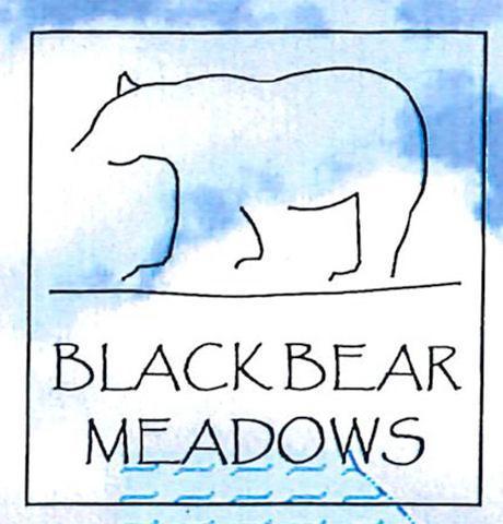 Black Bear Meadows,46711