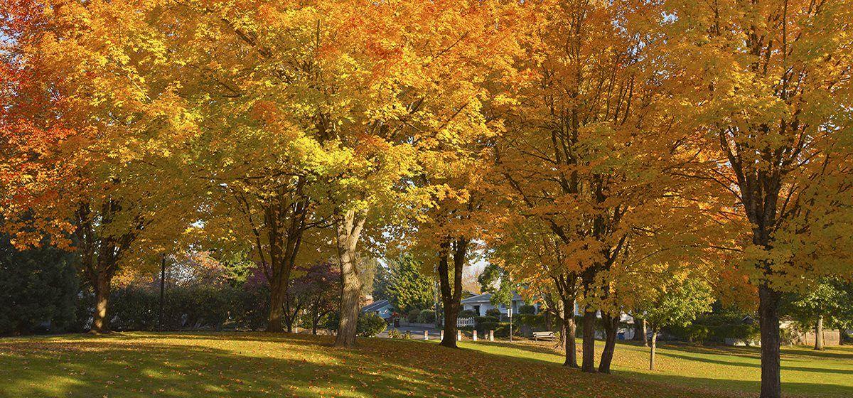 Gresham Park