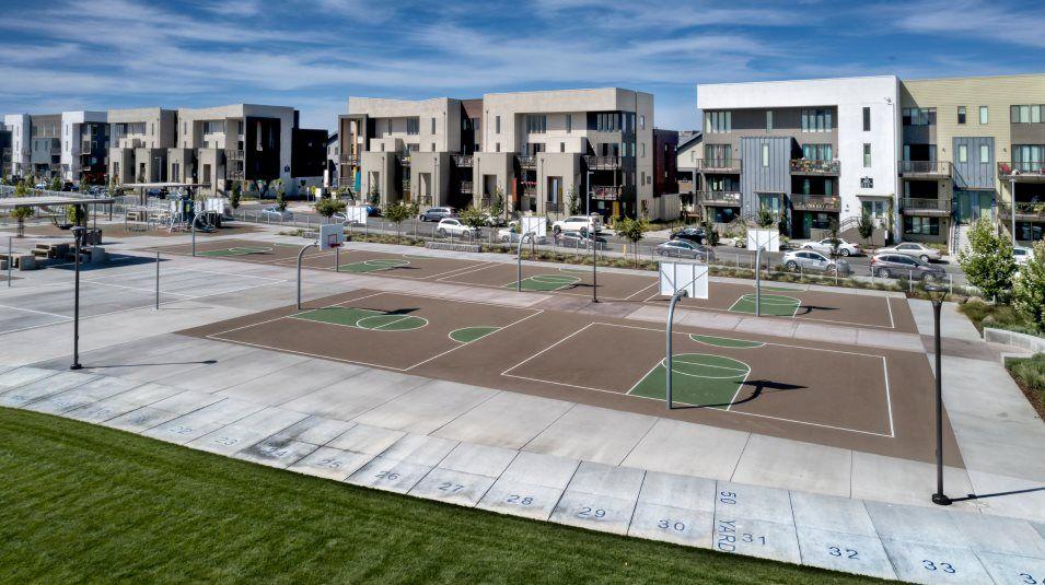 Innovation basketball courts