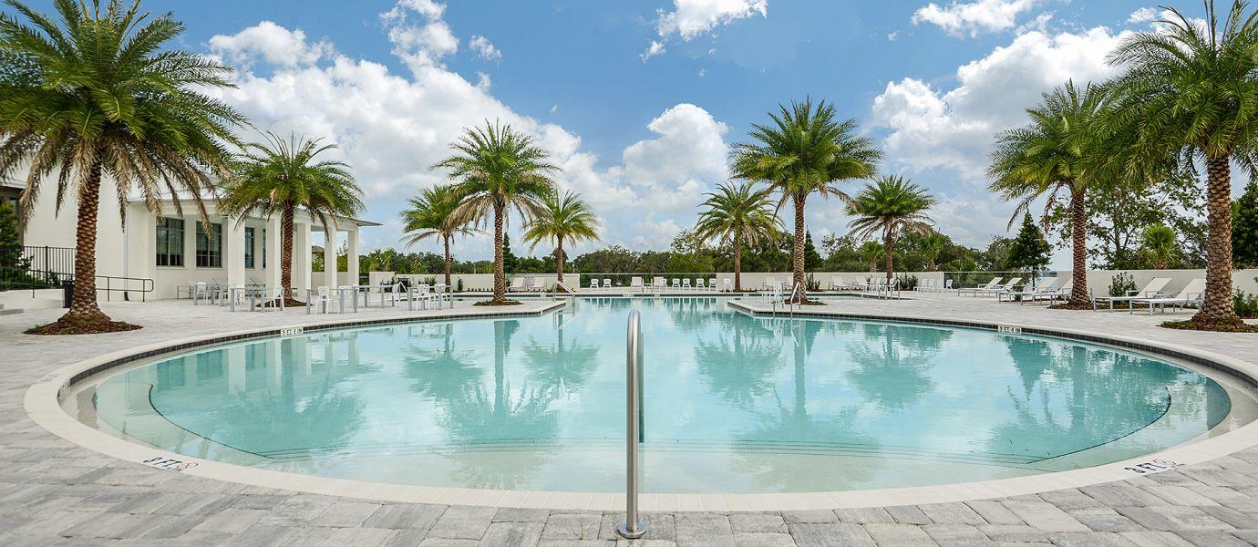 Waterside Cove Swimming pool