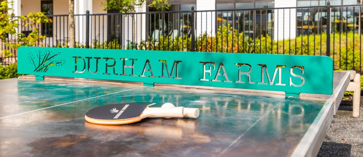 Durham Farms Ping Pong table